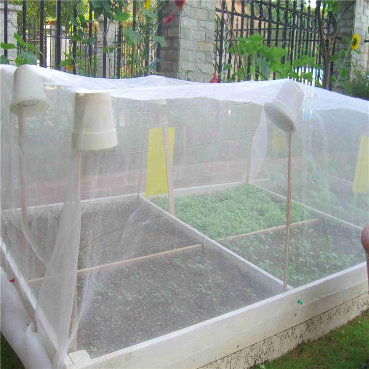 质量好的防虫网定做蔬菜瓜果防虫网透光加密纱网厂家发货